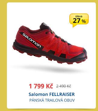 Salomon FELLRAISER