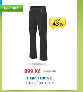Head TORINO