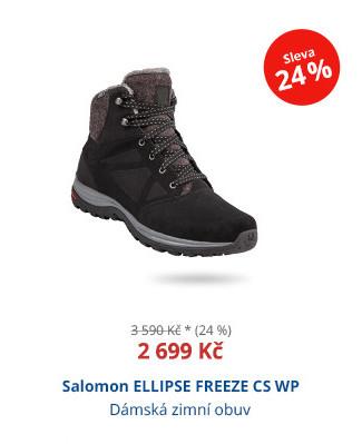 Salomon ELLIPSE FREEZE CS WP