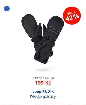 Loap RUDIK
