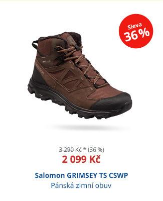 Salomon GRIMSEY TS CSWP