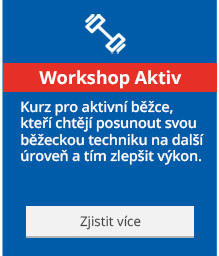 Workshop Aktiv