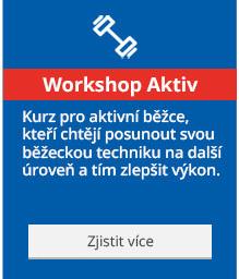 Workshop Aktiv
