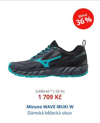Mizuno WAVE IBUKI W