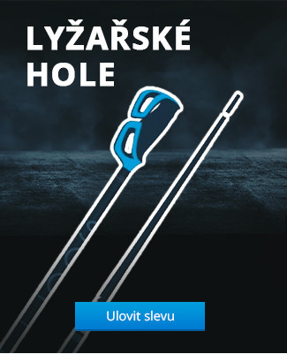 Lyžařské hole
