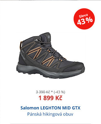 Salomon LEGHTON MID GTX