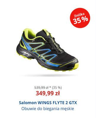 Salomon WINGS FLYTE 2 GTX
