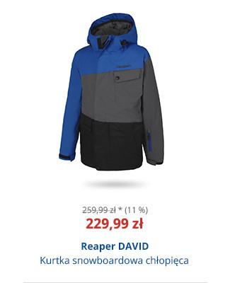 Reaper DAVID