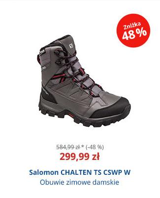 Salomon CHALTEN TS CSWP W