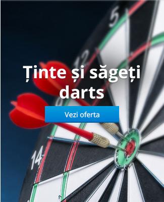 Ținte și săgeți darts