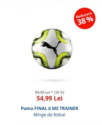 Puma FINAL 6 MS TRAINER