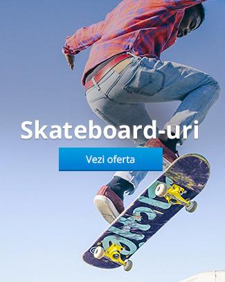 Skateboard-uri