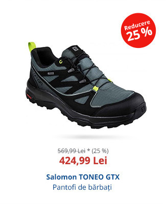 Salomon TONEO GTX