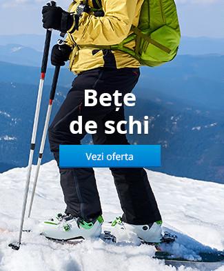 Bețe de schi