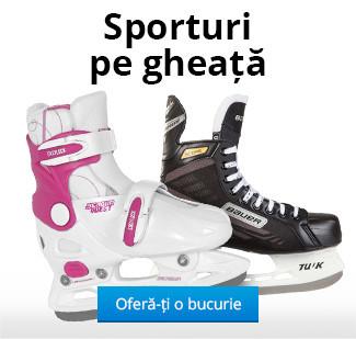 Sporturi pe gheață