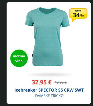 Icebreaker SPECTOR SS CRW SWT