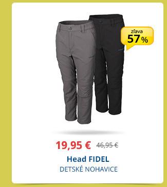 Head FIDEL
