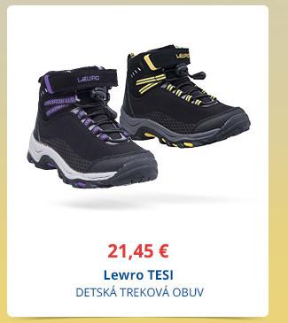 Lewro TESI