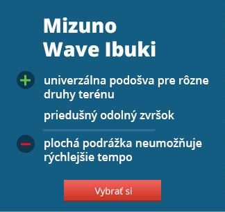 Mizuno Wave Ibuki