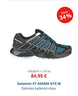 Salomon XT ASAMA GTX W