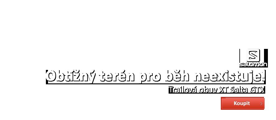 Salomon XT SALTA GTX