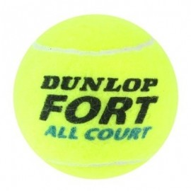 Dunlop FORT ALL COURT FRENCH