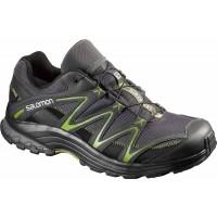 Salomon TRAIL BLAZER 2 GTX - Pánská běžecká trailová obuv
