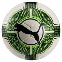 Puma evoPOWER 4.3 CLUB