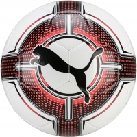Puma EVOPOWER 6.3 TRAINER MS